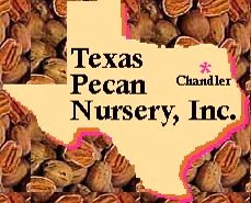 A Family Owned And Operated Business Located In Chandler Tx Texas Pecan Has Been Production Since 1925 On 400 Acres Offers Variety Of Nut